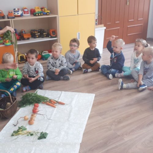Poznajemy warzywa.