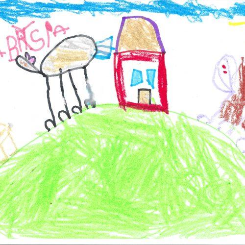 Moje wiejskie podwórko - Koszałki Opałki